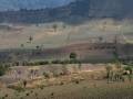 036_acatenango_fuego_vulcano_antigua_guatemala_2010_0466