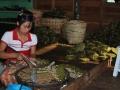 102_burma_myanmar_2009_665