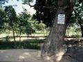 055_cambodia_2004_269