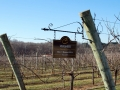 06_childressvineyards2017_0294