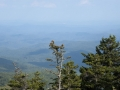 35_grandfathermountain_2015_0491