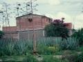 048_mexico2003_122