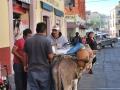 004_zacatecas_mexico2011_0233